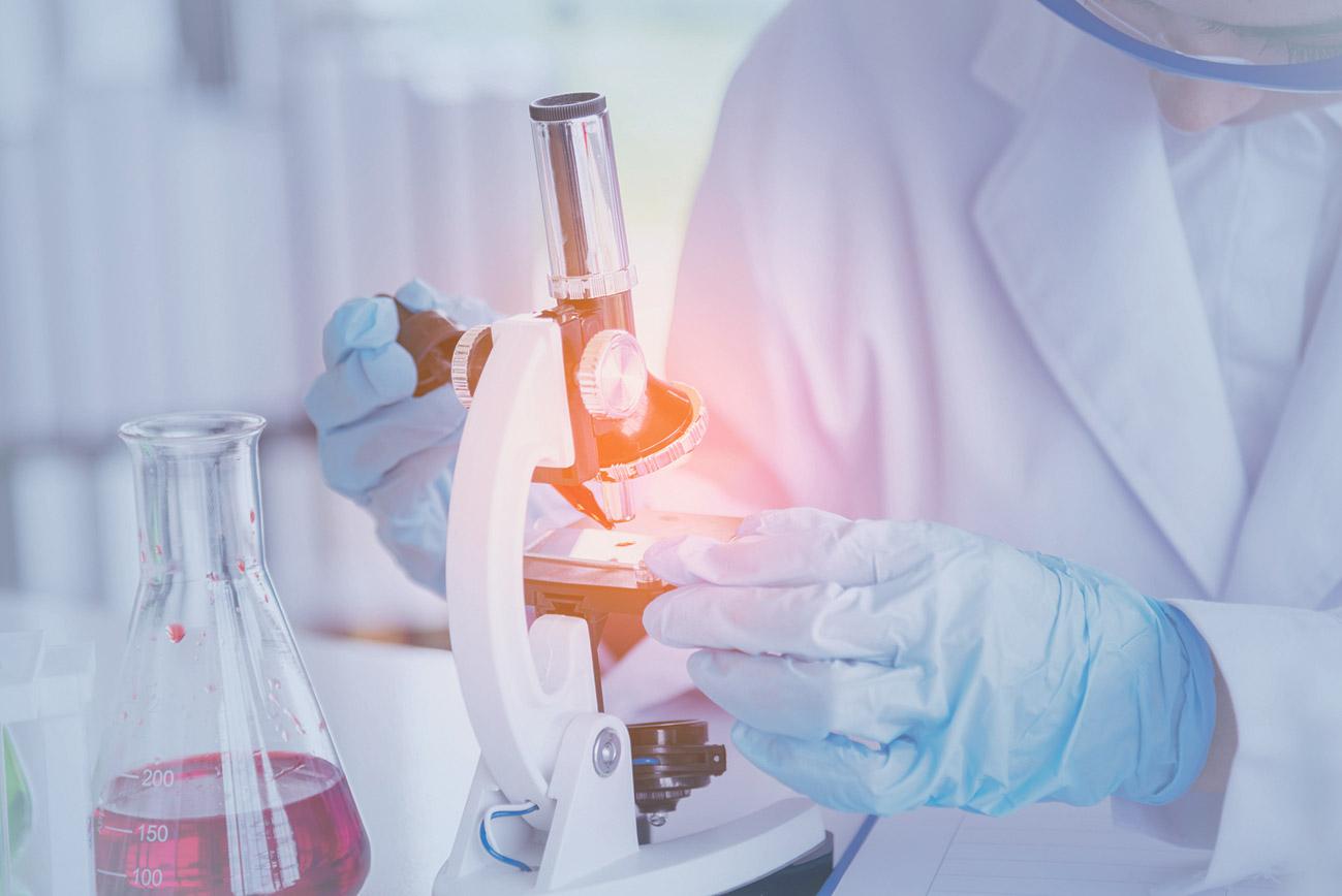 Forscherin arbeitet an einem Mikroskop im Labor